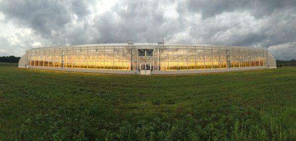 greenhouse-memphis